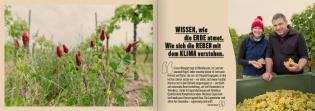 170124-image-brosch-bernhard-a5quer-screen-5