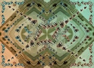 animal-dance-rz-180x130-hr-lr_0