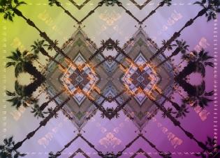 purple-palms-rz-180x130-hr-lr