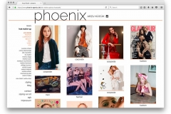 phoenix-agentur-website-13-53-45