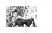 140227-daniels-imagebook-215x273-lay-rahmen-final-08
