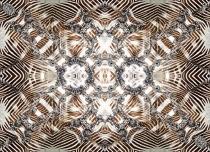 120902-zebra-180x130-rz-ind-1-lr