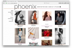 phoenix-agentur-website-13-53-30