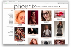 phoenix-agentur-website-13-53-39